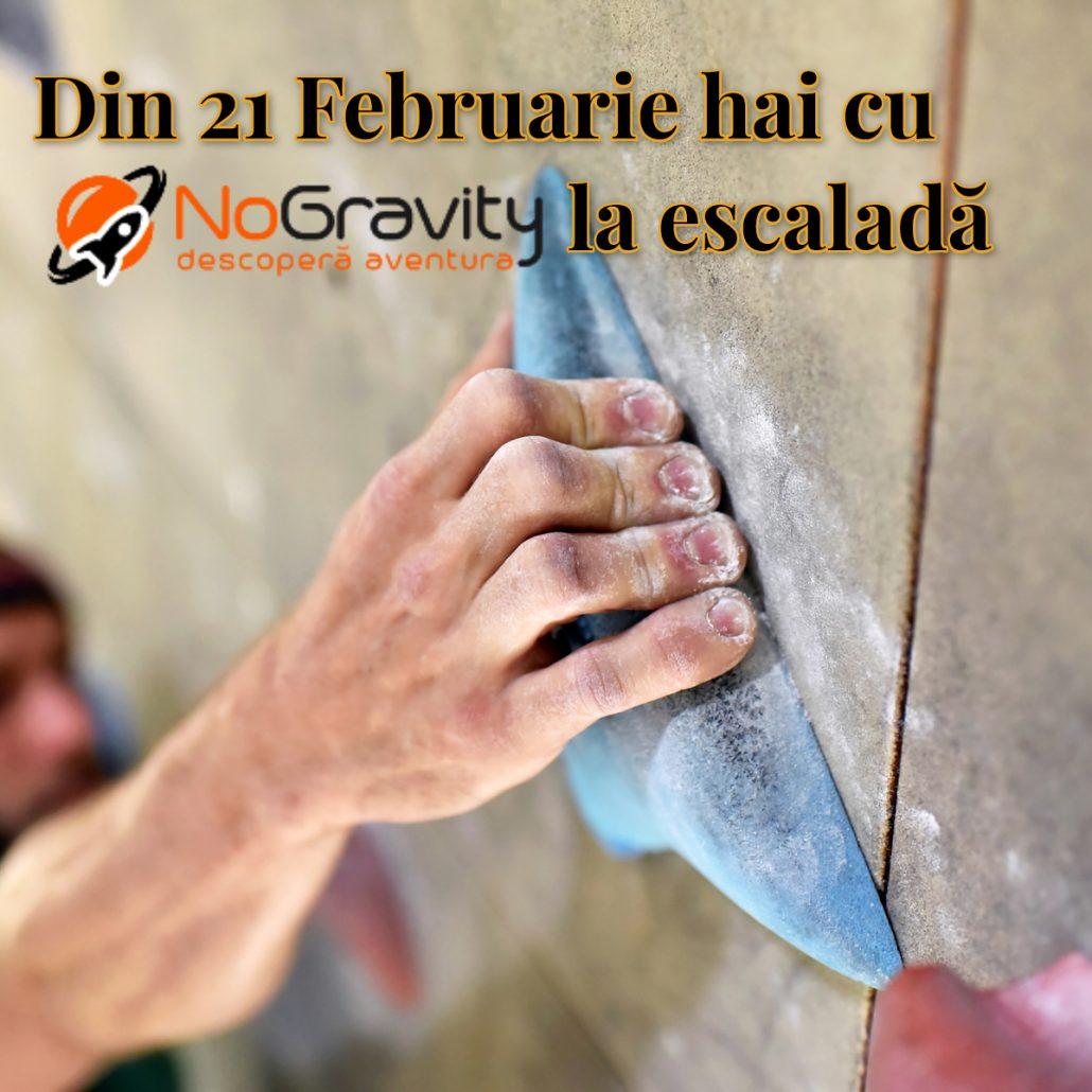 Imagine promo cursuri de escalada